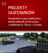 SKATEPARK CONSTRUCTION