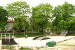 Skatepark w Jeleniej Górze