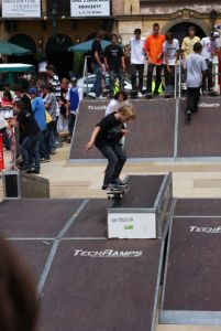 Es game - skatepark Techramps 5