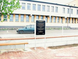 skatepark Łosice 10