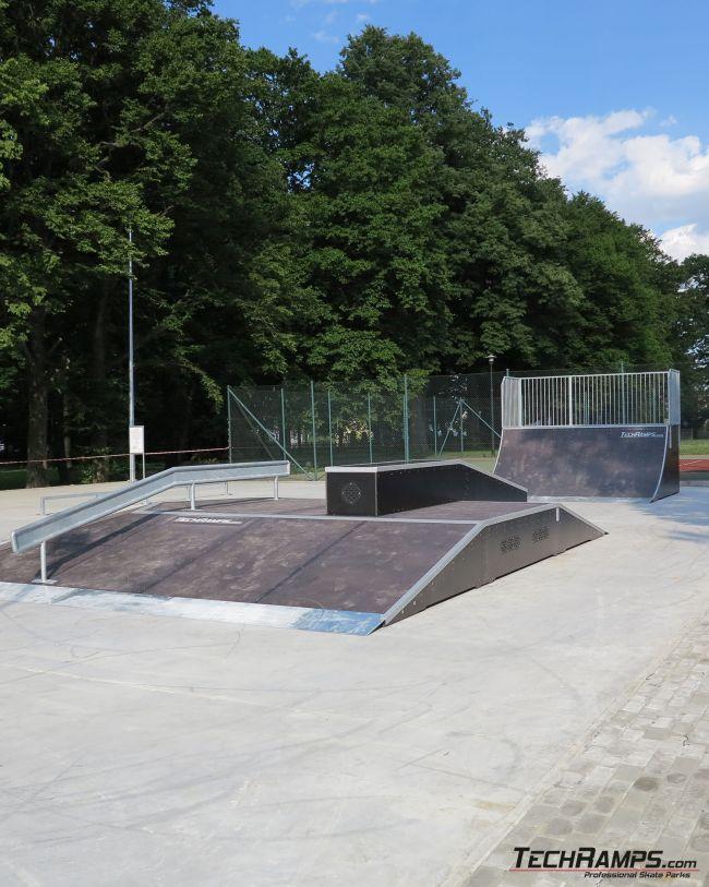 Skatepark Rymanów